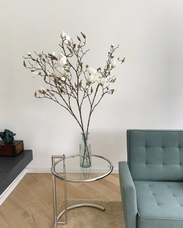 magnoliatakken magnolia takken bloesemtakken siertakken kopen