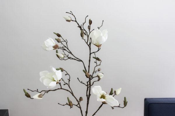 witte kunst magnoliatak