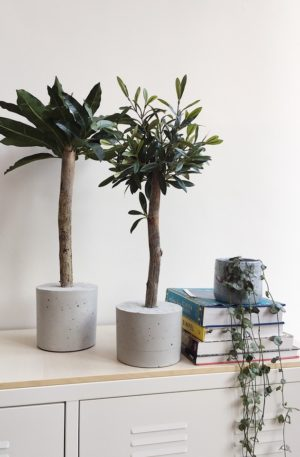 3. Mini Boommades en planten