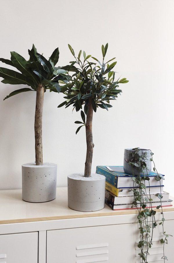 mooie kunstplanten kunst olijfboompje olijfboom voor binnen binnenboom interieurboom kunstboom kunstplant kunstplantje boommade interieurplant neppe boom in huis