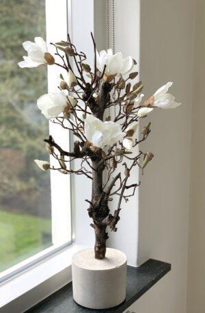 witte magnoliatak magnolia takken wit stam kunstboom Lentetakken voor binnen