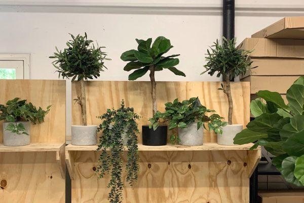 groen kunst hangplantje boommade kunst plantjes mooi kunst boompje mooi interieur boom binnen