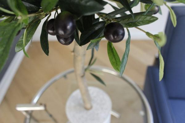 kunst boompje kunst mangoboompje kunstplant grote kunst olijfboom voor binnen neppe olijfboom kunstboom in huis duurzame kunstbomen kopen kunst olijfboompje boommade