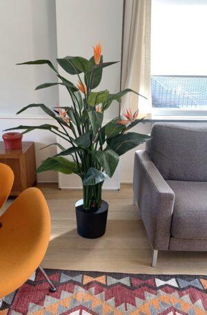 grote kunst plant kunst paradijsvogelplant kunst strelitzia grote kunstplant kunst plant groot kopen
