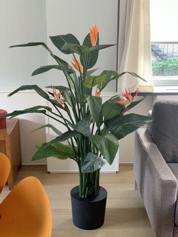 kunst paradijsvogelplant kunst strelitzia grote kunstplant kunst plant groot kopen