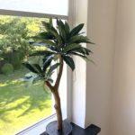 kunst boompje voor binnen mooi kunstboompje kunstboom kunst boom klein mangoboompje mango boompje binnen boompje op stam