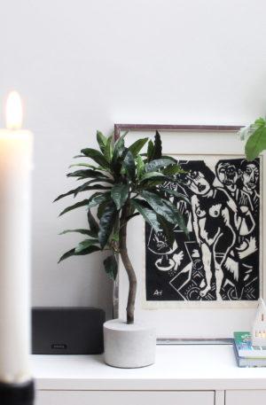 kunst mangoboompje kunstboompje kunst olijfboompje mooie kunstplant
