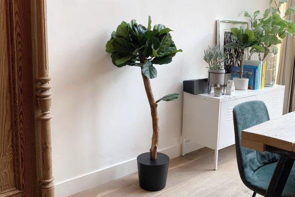 kunstplant kunstboom kunst ficus kantoor plant kantoor boom interieurboom binnen boom voor binnen boom in huis