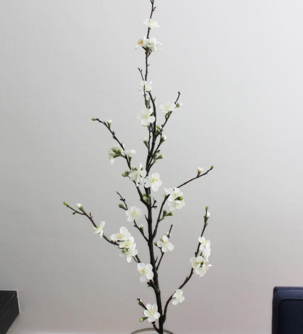 witte kunst bloesemtak appelbloesem