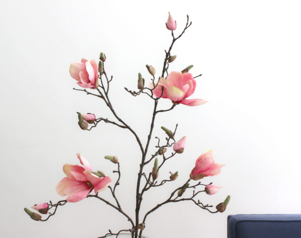 Roze kunst magnoliatak