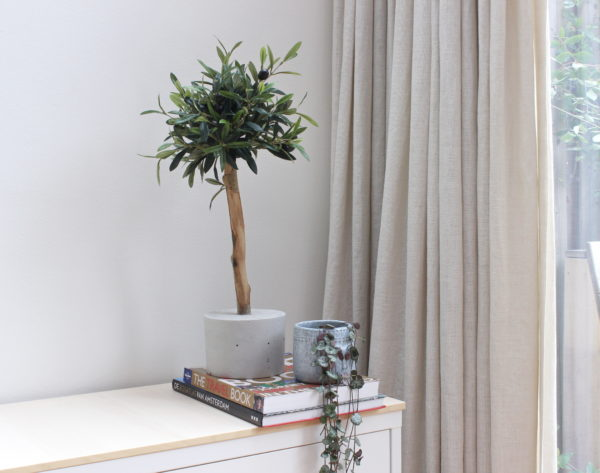 kunst olijfboompje olijfboom