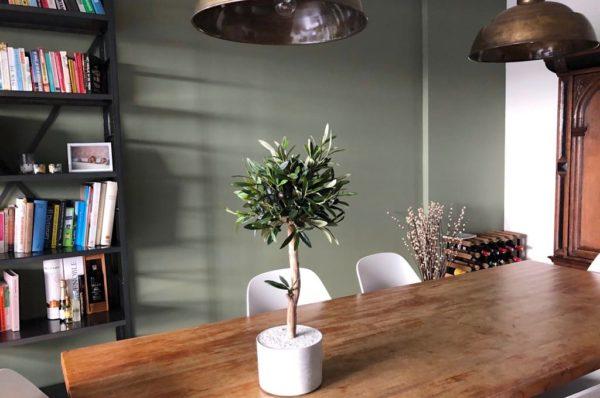 kunst olijfboompje olijfboom kunstboom interieurboom boommade neppe olijfboom binnen