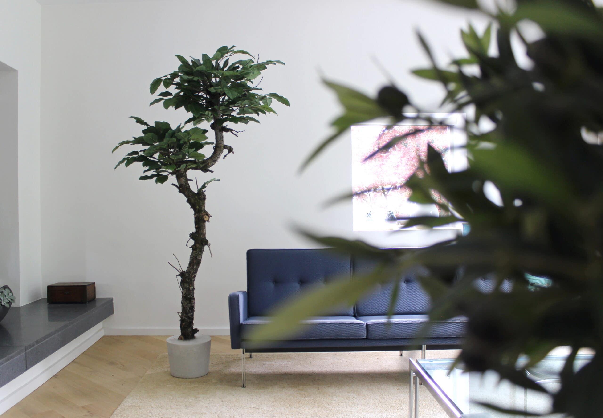 kunstboom groot klein boommade homemade interieurbomen interieur kunstboom binnenboom boom voor binnen grote kunstplant