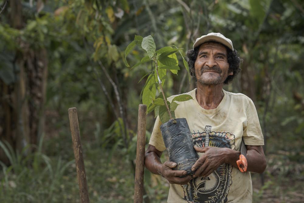 positief klimaatnieuws 2019 positief nieuws duurzaamheid blog bomen planten duurzaam leven tips