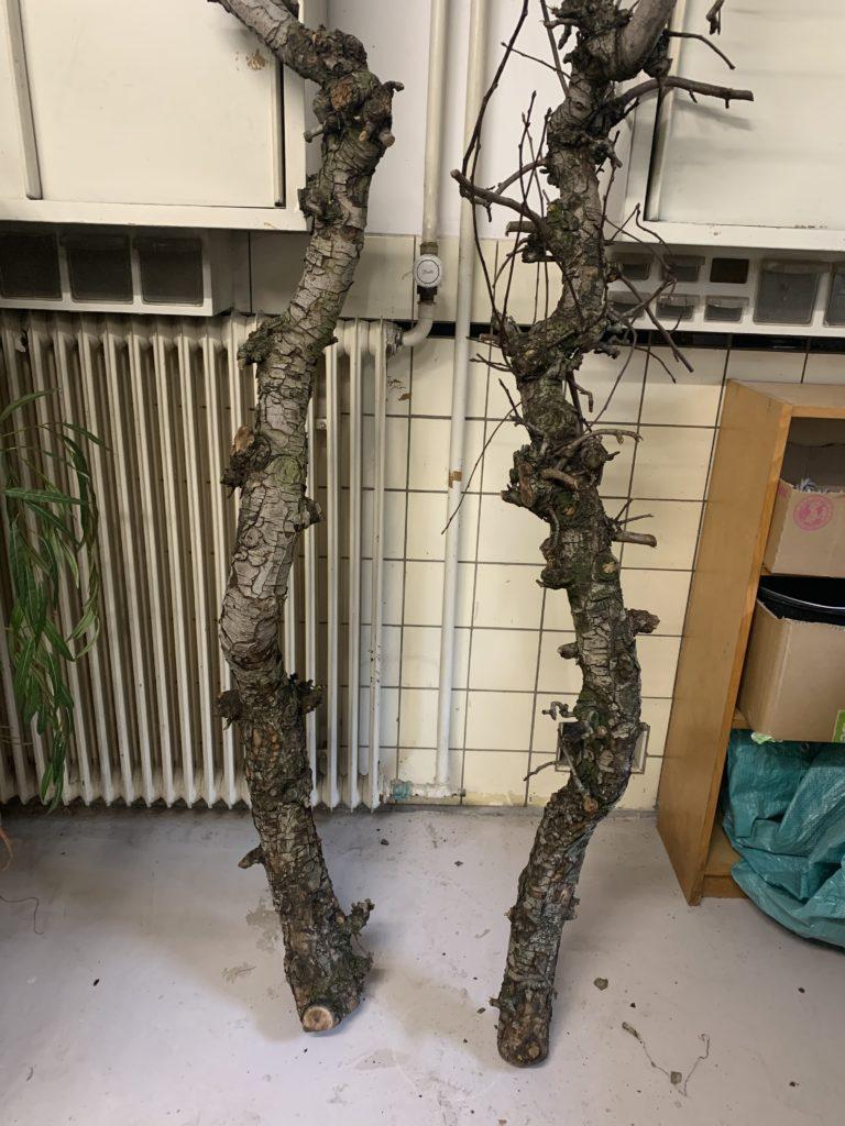 kunstbomen maken kunstboom maken bomen maken kunstboom met stam boom maken bomen maken