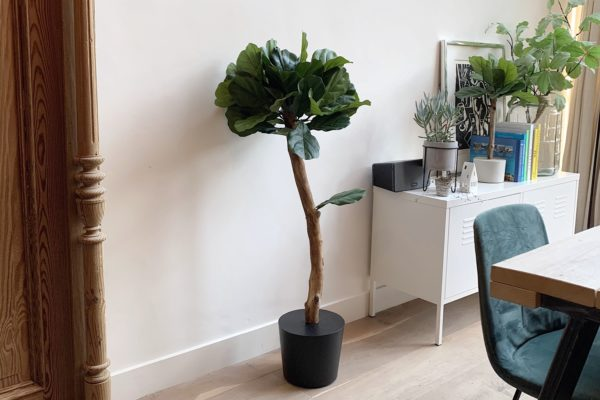 kunst plant kunstboompje grote kunstplant met grote bladeren groot blad kunstplanten voor binnen