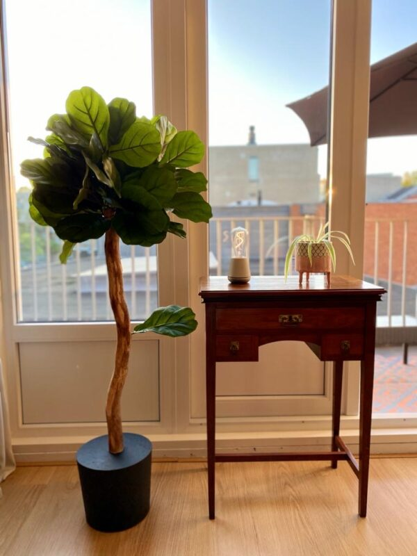 midi vijg ficus plant kunstplant kunstboom boommade interieur boom interieurbeplanting zwarte voet