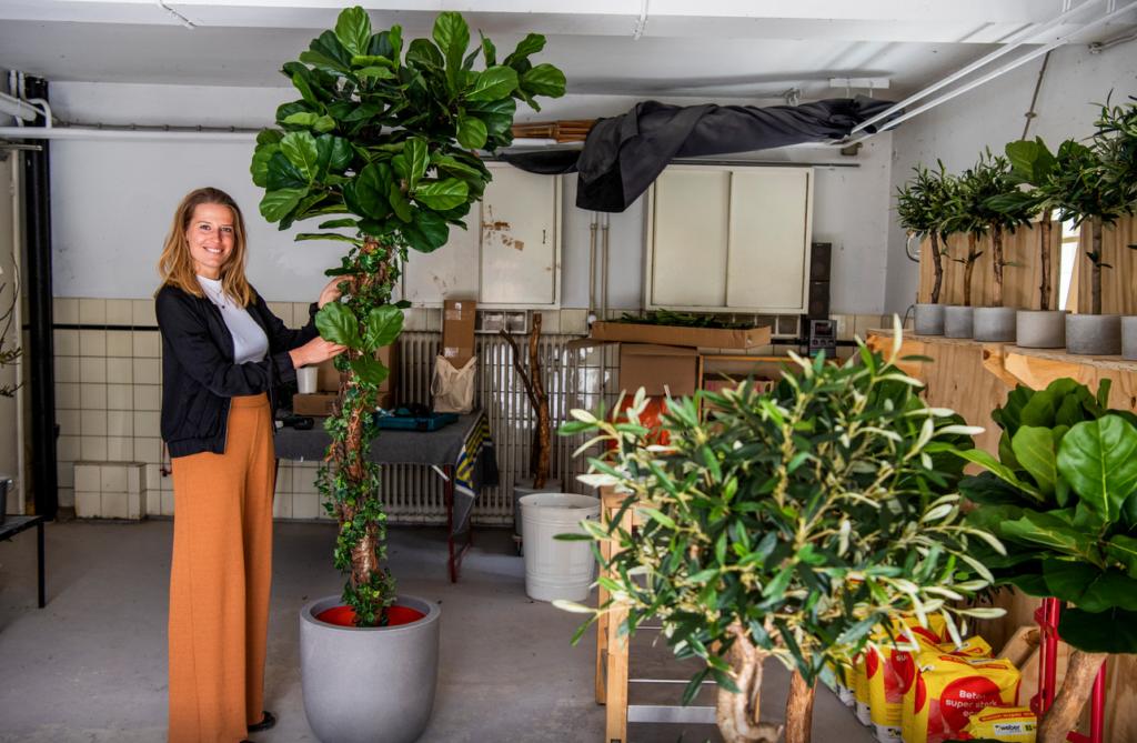bomen voor binnen kopen boommade kunstboom kopen kunstbomen kopen kunstboom in huis kunstboom binnen kunstplant kopenmaakt natuur gelukkig natuur maakt gelukkigboommade homemade interieurbomen interieur kunstboom binnenboom boom voor binnen grote kunstplant