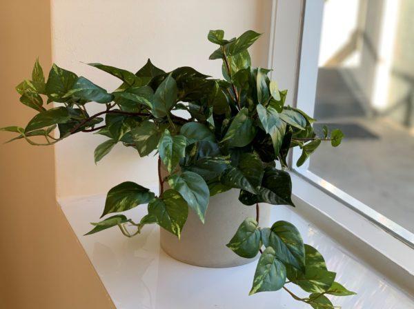 groen kunst plantje duurzaam interieur kunst plant kunst plantjes kopen