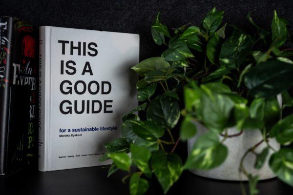 planten experiment weetjes over planten duurzame feitjesgroen kunst plantje plant