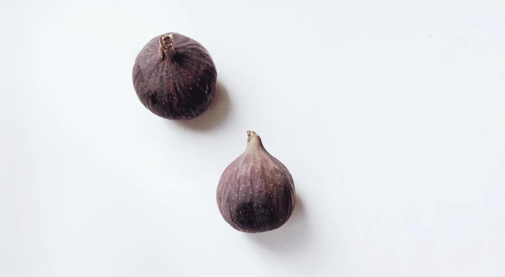 vijg vijgenboom ficus sur gebruik boom