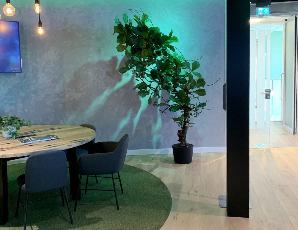 kunst boom kopen kantoor interieurbeplanting kunstbomen voor op kantoor kopen (2)