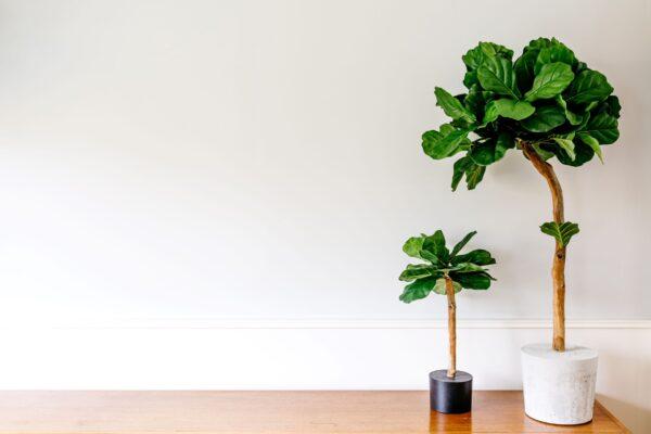 groene kunst bomen boom in huis kunstboom kopen groene kunstboom mooi