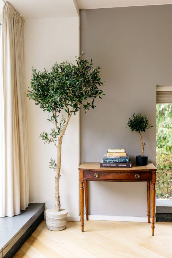 kunst olijfboom binnen kopen kunstboom in huis binnenboom