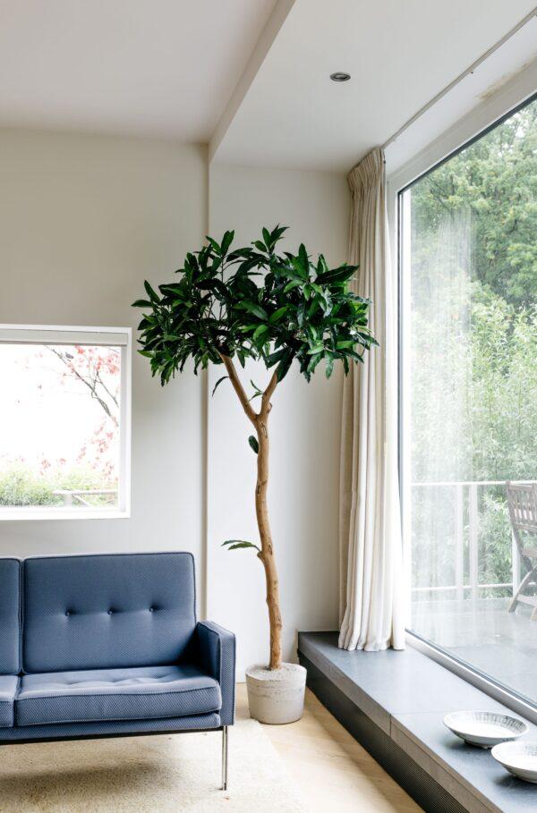 grote groene kunstboom kunstbomen groen kopen kunst boom binnen