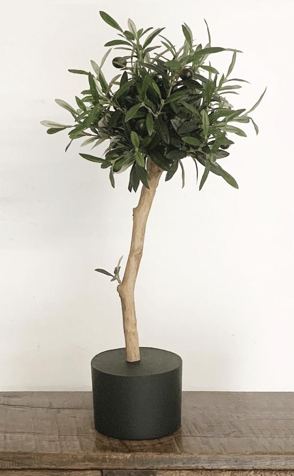 kunst olijfboompje op stam kunst boom kopen kunstboom kunst olijfboom