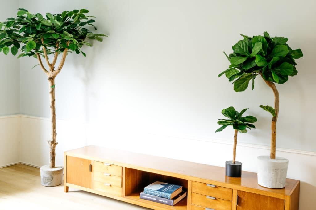 binnen boom in huis kunstboom groot binnen Boommade kunstbomen mooi