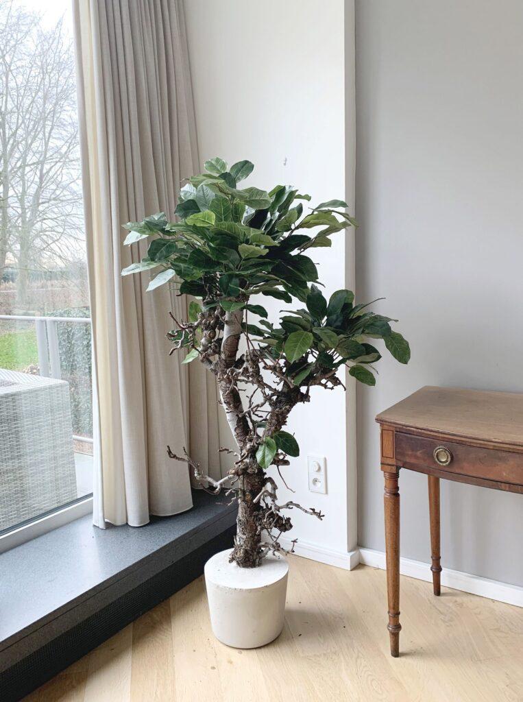 groene kunst boom groene kunstboom