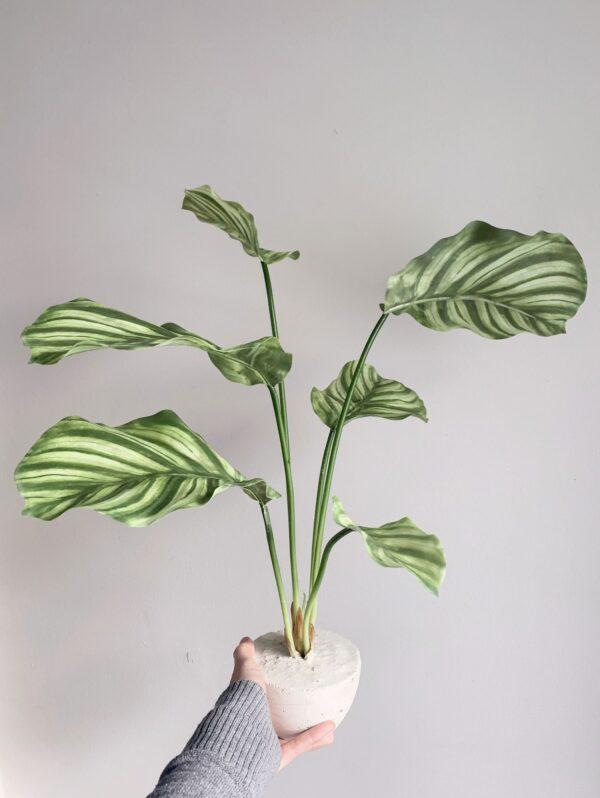 kunstplanten kopen kunst plant kunst plantje