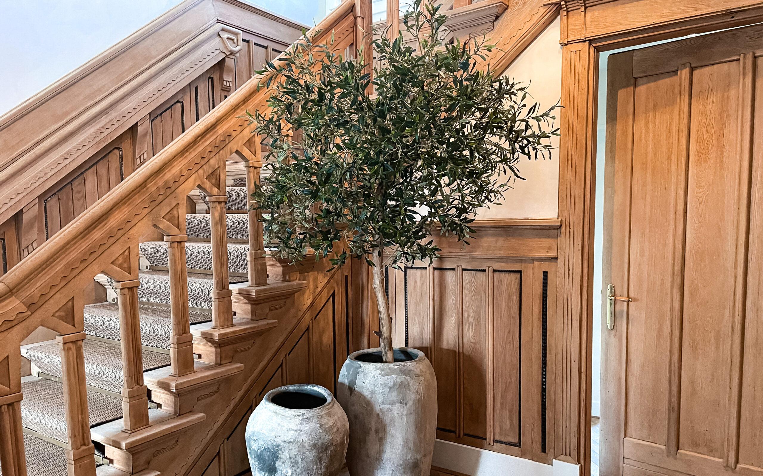 kunst olijfboom groot kunstboom op mat kunstbomen groot laten maken binnen bomen interieurboom
