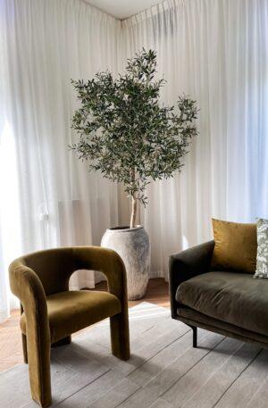 kunst olijfboom binnen olijfboom in huis olijfboom woonkamer binnen boom boom voor in huis grote olijfboom