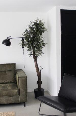 kunst olijfboom echte stam kunstboom